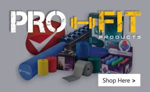 Pro Fit Icon Mini 300x184 - Chiropractor Taunton